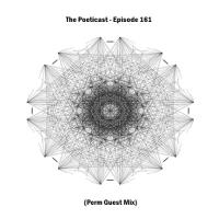 The Poeticast - Episode 161 (Perm Guest Mix)